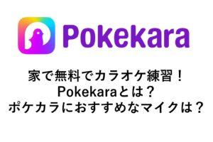 karaoke-pokekara-maiku0